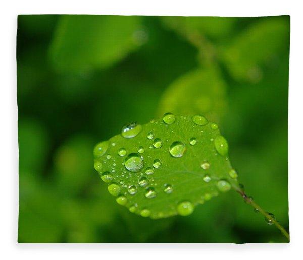 Dew Dappled Leaf Fleece Blanket