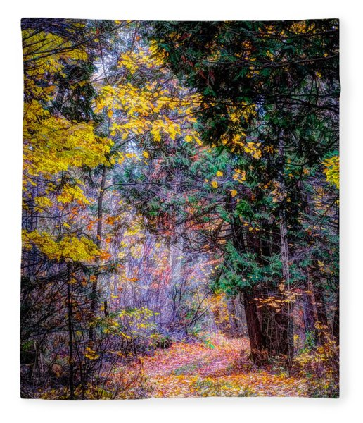 Distant Path Fleece Blanket