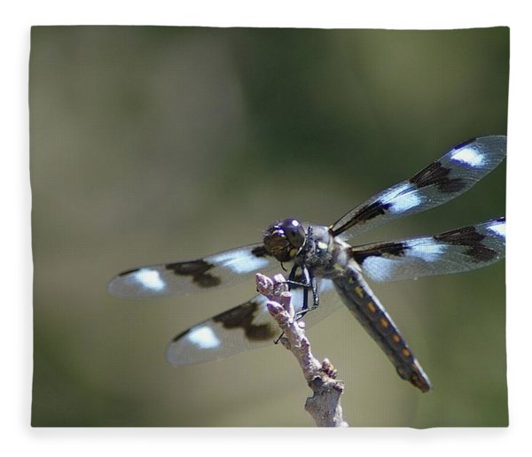 Dragonfly Hanging On  Fleece Blanket