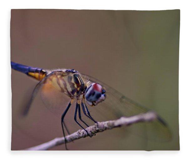 Dragonfly On Twig Fleece Blanket
