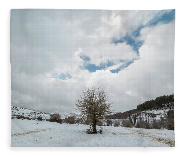 Dry Tree In The Snow Fleece Blanket