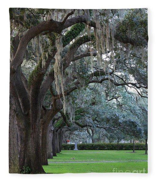 Emmet Park In Savannah Fleece Blanket