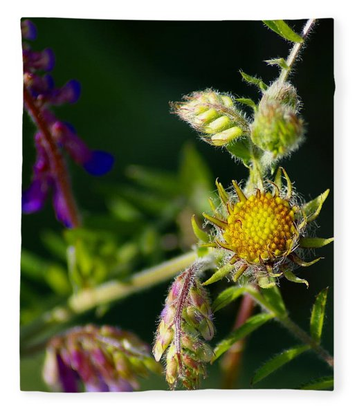 Eye Candy From The Garden Fleece Blanket