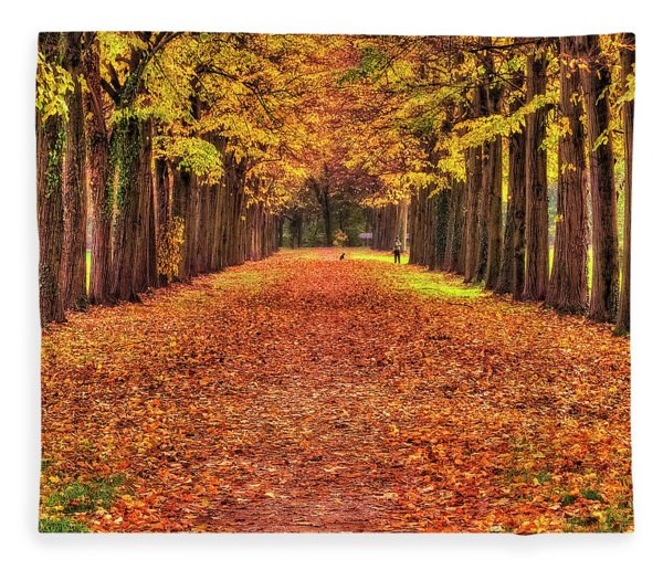 Fall Colors Avenue Fleece Blanket
