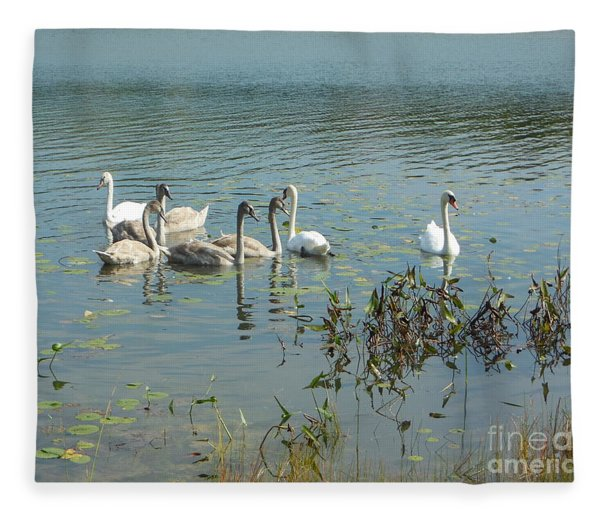 Family Of Swans Fleece Blanket