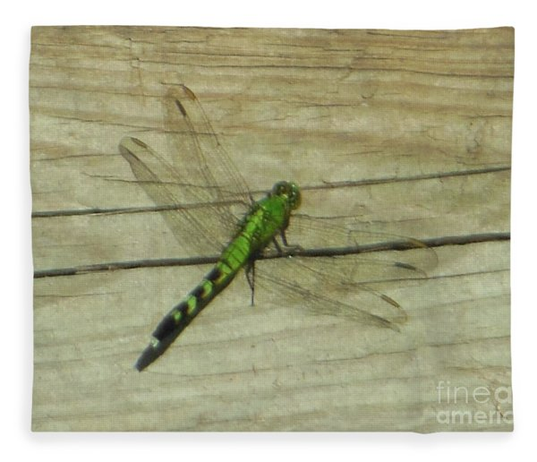 Female Eastern Pondhawk Dragonfly Fleece Blanket
