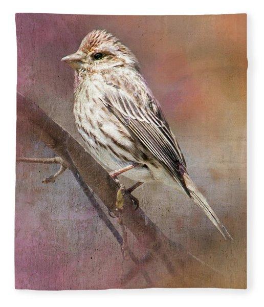 Female Sparrow On Branch Ginkelmier Inspired Fleece Blanket