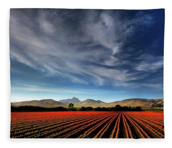Field Of Color Fleece Blanket