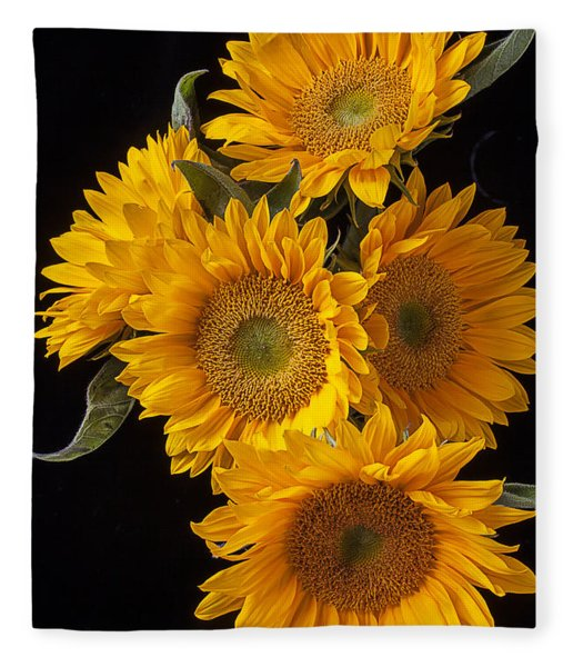 Five Sunflowers Fleece Blanket