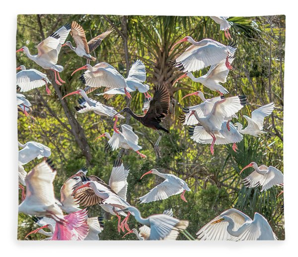 Flock Of Mixed Birds Taking Off Fleece Blanket