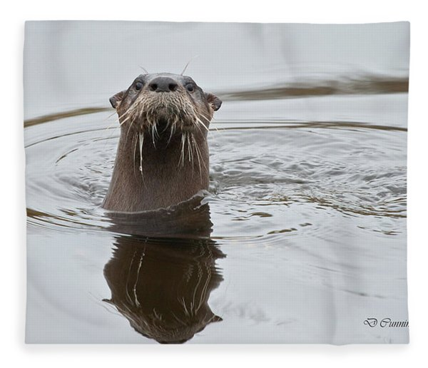 Florida Otter Fleece Blanket