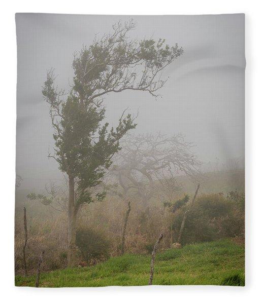 Fog And Wind Fleece Blanket