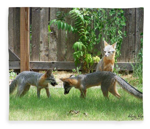 Fox Family Fleece Blanket