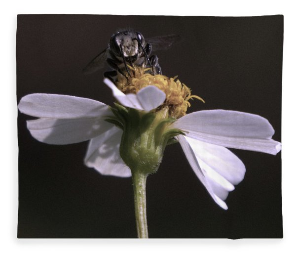 Frontal View Of A Bee On A Flower Fleece Blanket