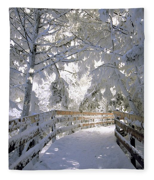 Frosty Boardwalk Fleece Blanket