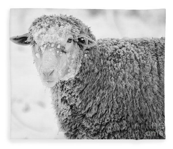 Frozen Dinner Fleece Blanket