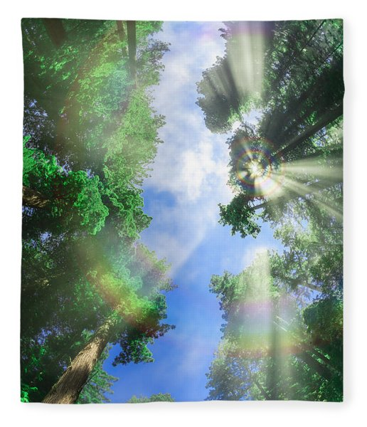 Glory Amongst Redwoods Fleece Blanket