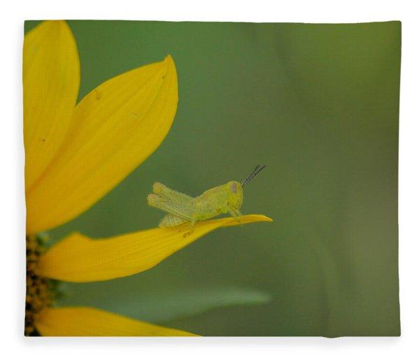 Grasshopper On A Flower Petal Fleece Blanket