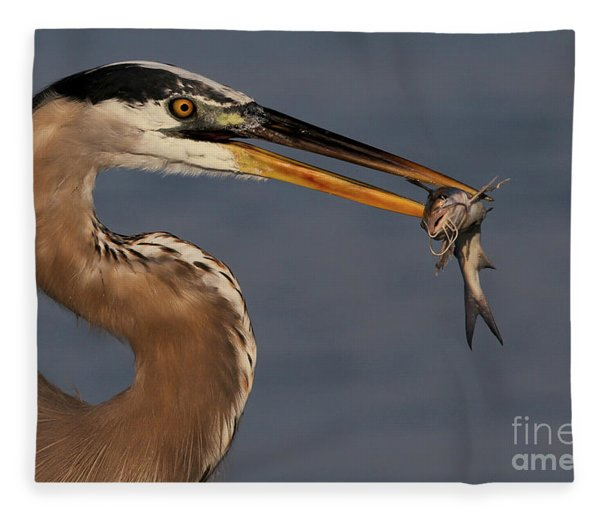 Great Blue Heron W/catfish Fleece Blanket