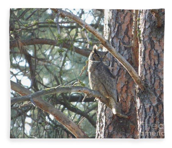 Great Horned Owl In A Tree Fleece Blanket