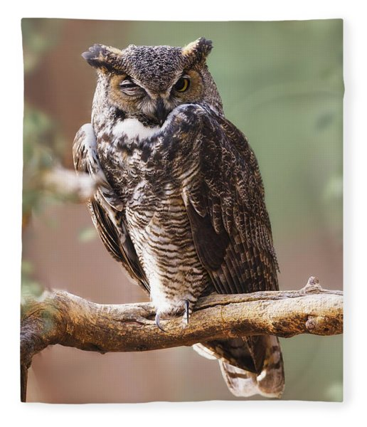 Great Horned Owl Perched On Branch Fleece Blanket