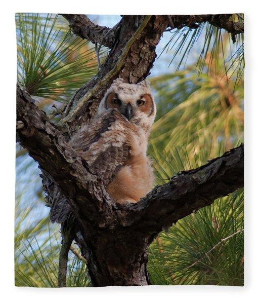 Great Horned Owlet Fleece Blanket