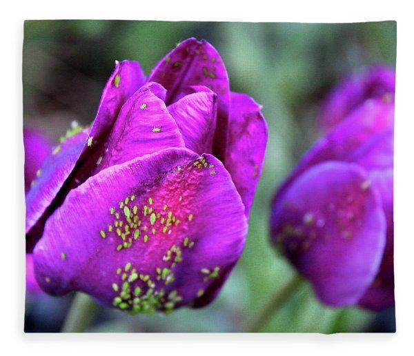 Aphids On Purple Tulips Fleece Blanket
