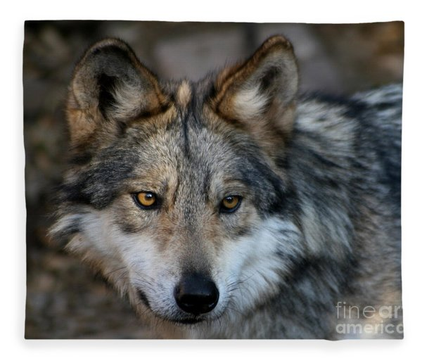 Grey Wolf Fleece Blanket