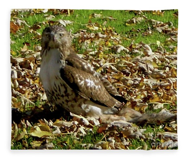 Hawk Falling Leaves Fleece Blanket