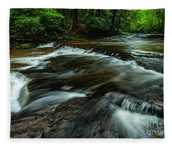Headwaters Of Williams River  Fleece Blanket