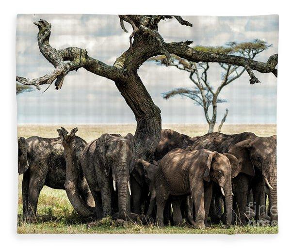 Herd Of Elephants Under A Tree In Serengeti Fleece Blanket