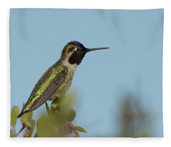 Hummingbird On Watch Fleece Blanket