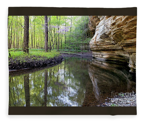 Illinois Canyon In Spring Starved Rock State Park Fleece Blanket
