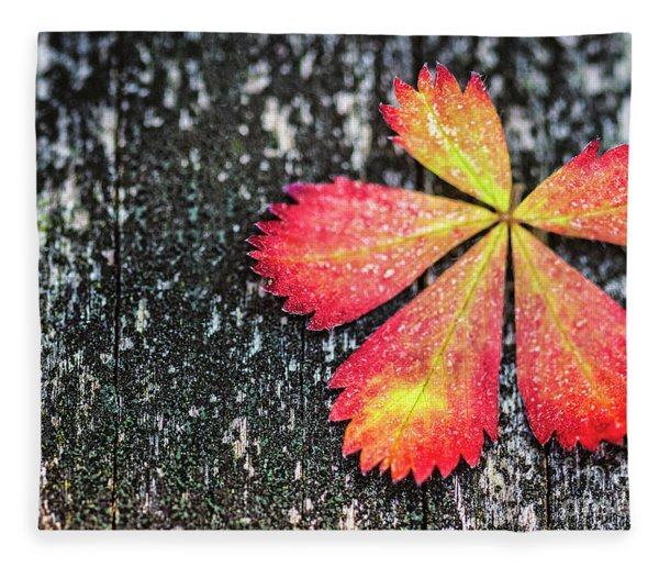 Impressions Of Autumn Fleece Blanket