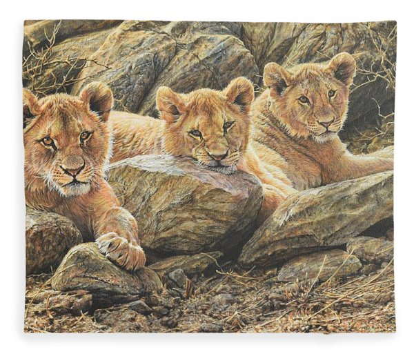 Fleece Blanket featuring the painting Interrupted Cat Nap by Alan M Hunt