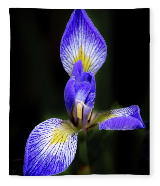 Iris #1 Fleece Blanket