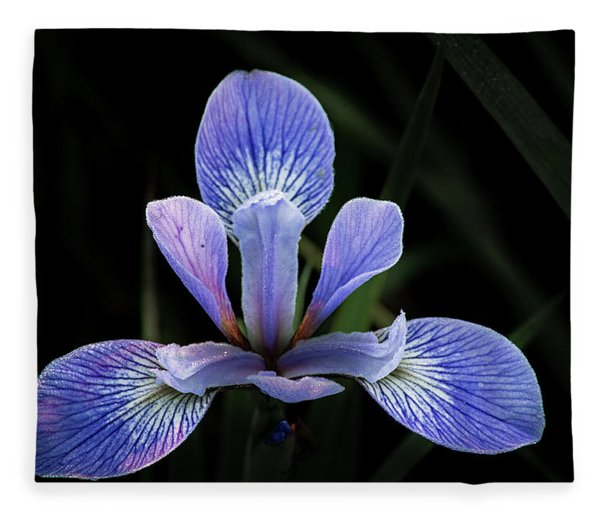 Iris #4 Fleece Blanket