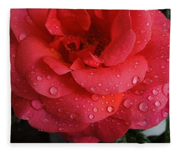 Fleece Blanket featuring the photograph June  Rose  by Colette V Hera  Guggenheim