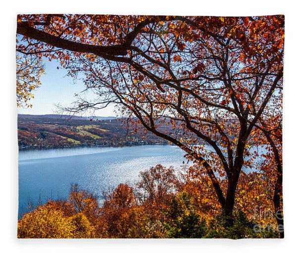 Keuka Lake Vista Fleece Blanket