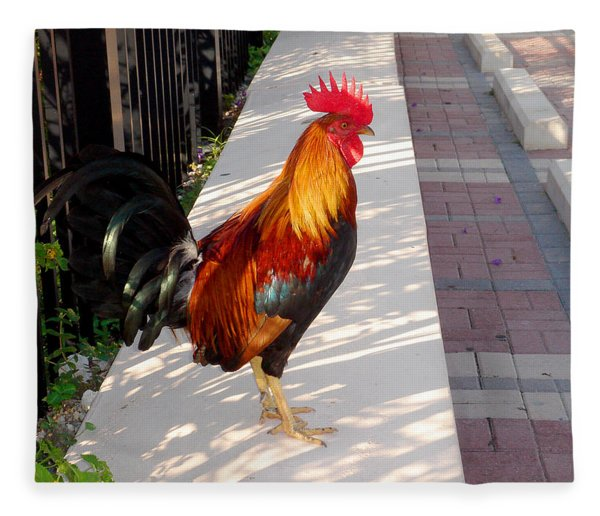 Key West Rooster Fleece Blanket