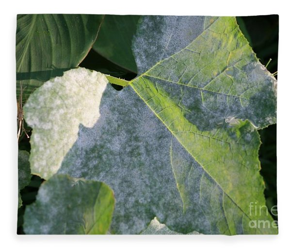 Calming Leafy Glade Fleece Blanket