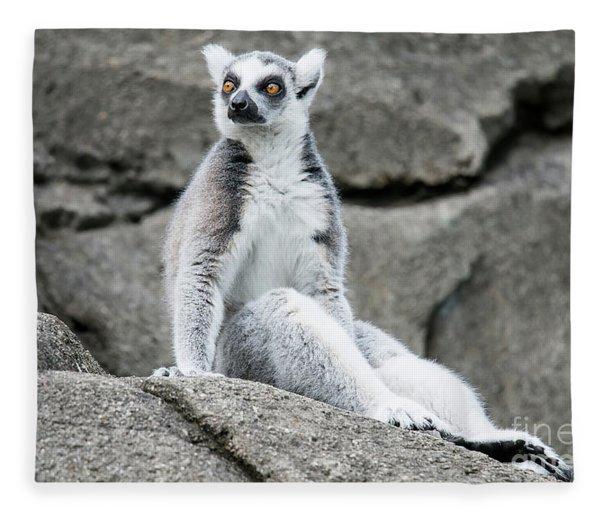 Lemur The Cutie Fleece Blanket