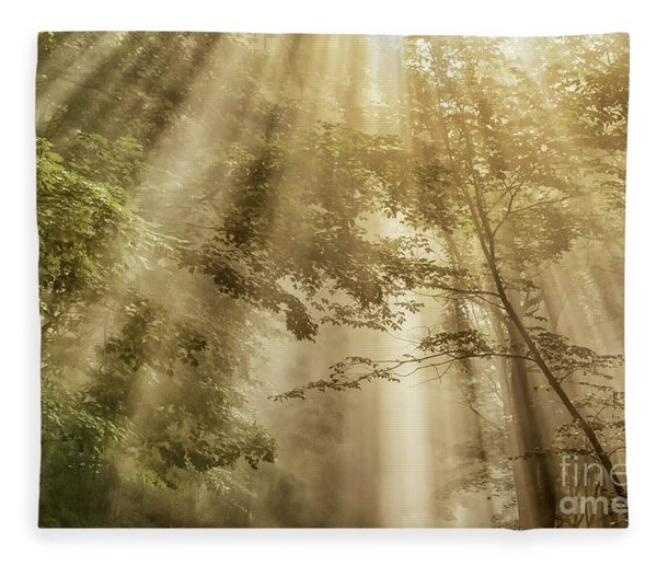 Let Your Glory Shine Fleece Blanket