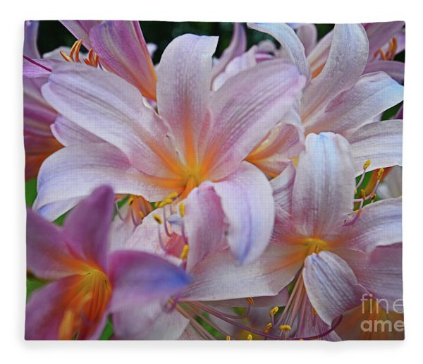 Lily Lavender Closeup Fleece Blanket
