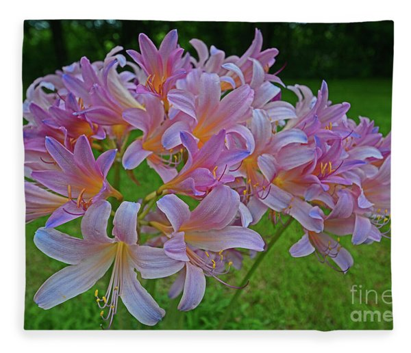 Lily Lavender Fleece Blanket