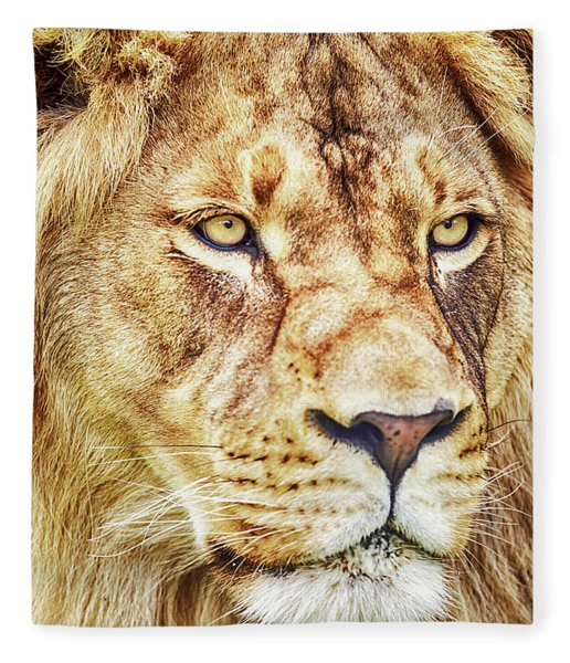 Lion Is The King Of The Jungle Fleece Blanket