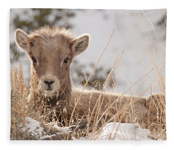 Little Bighorn Fleece Blanket