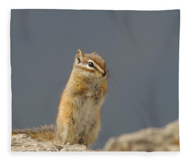 Little Chipmunk Fleece Blanket