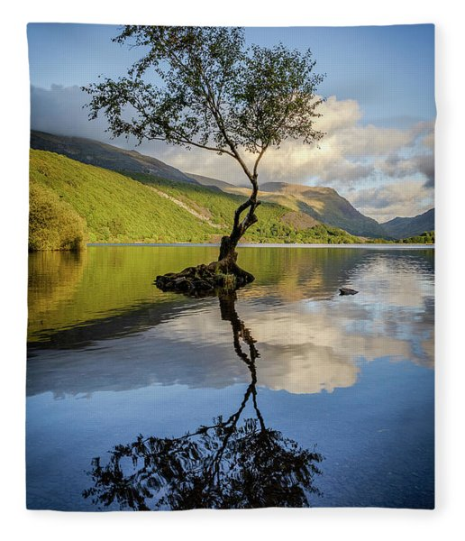 Lone Tree, Llyn Padarn Fleece Blanket
