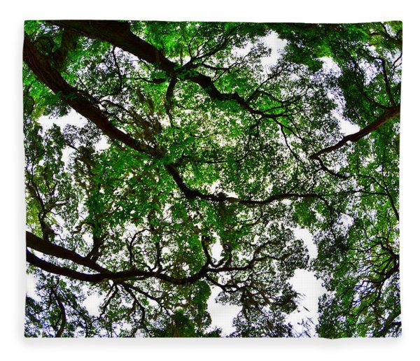 Looking Up The Oaks Fleece Blanket